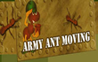 Army Ant Moving Inc